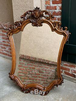 Large Antique French Open Carved Oak Wall Pier Mirror Frame Baroque Renaissance